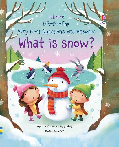 WHAT IS SNOW? | 9781474940092 | KATIE DAYNES