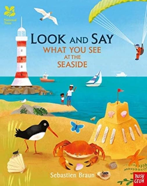 LOOK AND SAY WHAT YOU SEE AT THE SEASIDE | 9781788002509 | SEBASTIEN BRAUN