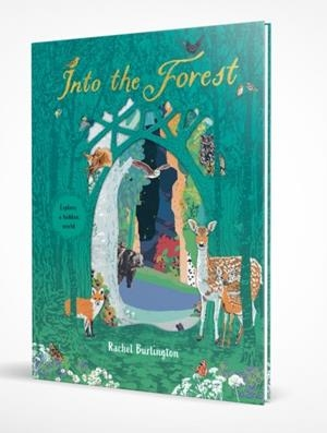 INTO THE FOREST | 9781407191164 | SCHOLASTIC