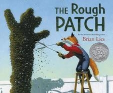 THE ROUGH PATCH | 9780062671271 | BRIAN LIES